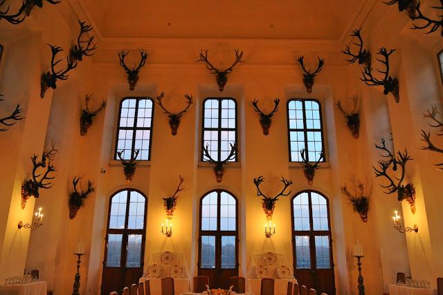 antlers wall moritzburg castle