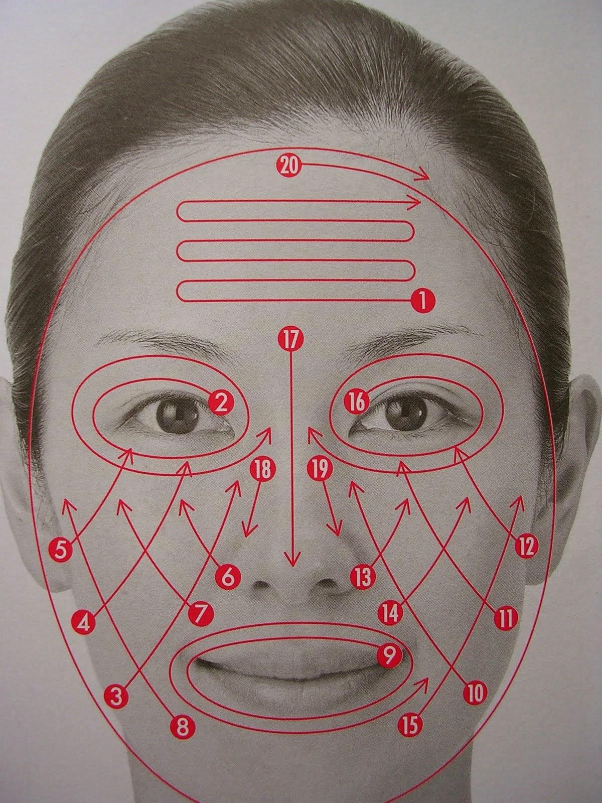 Схема японского массажа лица фото 239