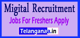Migital Recruitment 2017 Jobs For Freshers Apply