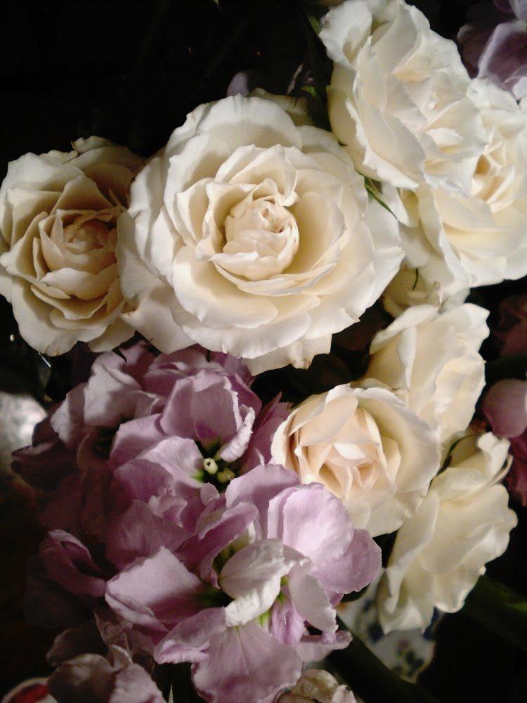 Sherri S Jubilee Beautiful Flowers From My Husband