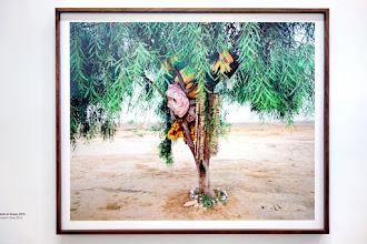 Expo : Ron Amir - Quelque part dans le désert - Musée d'Art moderne de la Ville de Paris - Jusqu'au 6 janvier 2019