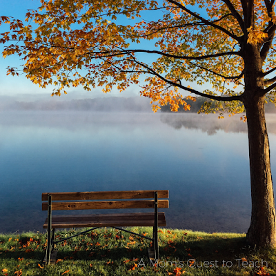 Fall scene with a bench by a lake