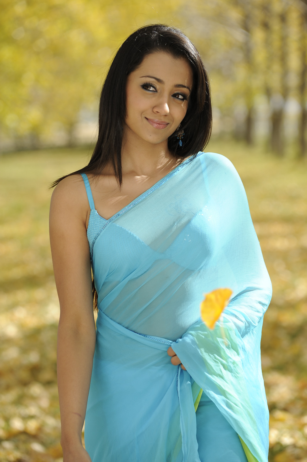 Heroine Walls Trisha Hot In Blue Saree-5728