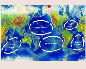 pacific ocean currents names - photo #25