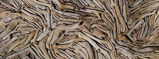 driftwood madera a la deriva como material de trabajo