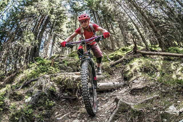 Mountainbike Touren Wildschönau Rosskopf mtb