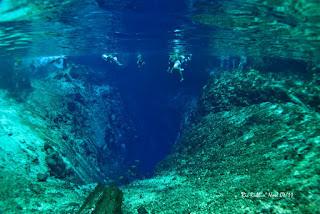 Green Pear Diaries, viajes, turismo, destinos turísticos, naturaleza, Río Hinatuan, Filipinas
