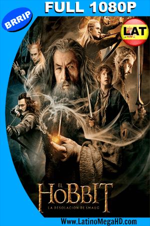 El Hobbit: La Desolación de Smaug (2013) Latino FULL HD 1080P ()