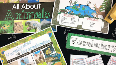 a complete bulletin board to reinforce the concepts taught about animals and their ecosystems