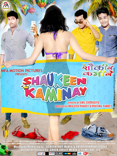 Shaukeen Kaminay (2016) Movie Poster