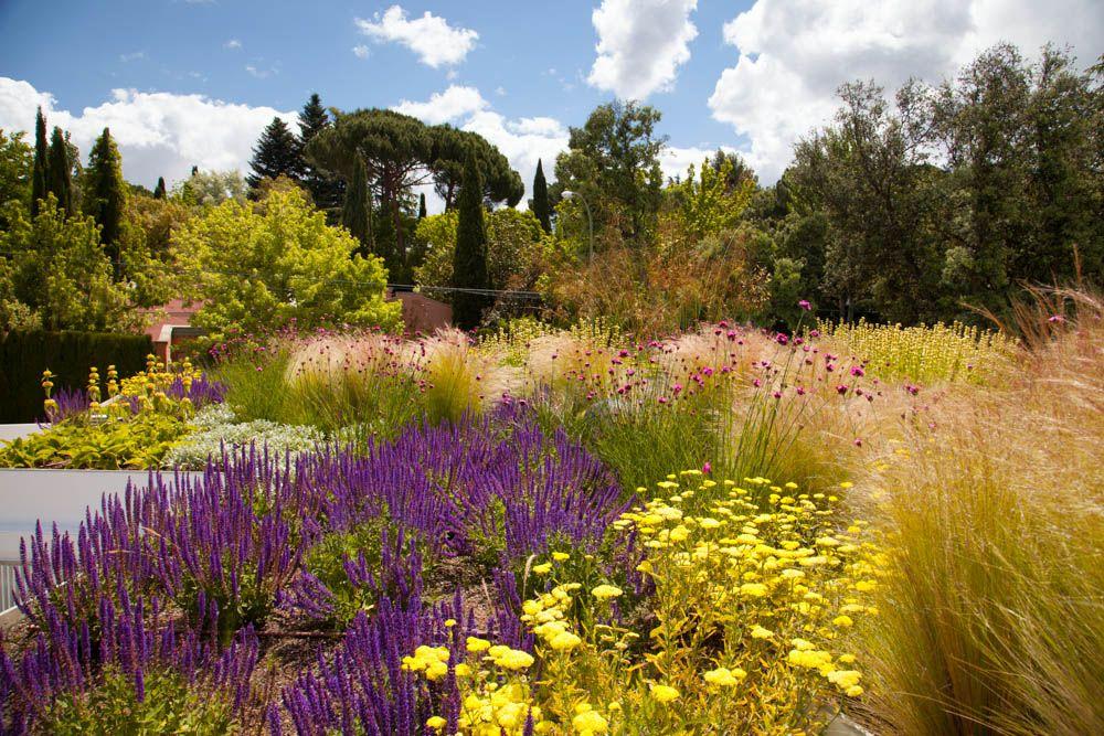 Ara azos en el cielo la buena salud de los jardines - Paisajistas en madrid ...