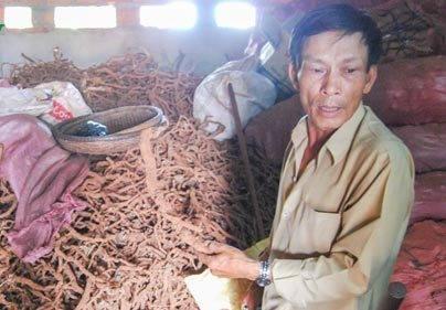 Những kiểu mua bán tận diệt của Trung Quốc tại Việt Nam ảnh 7