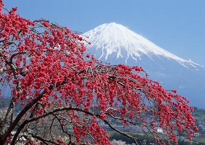 Fujiyama, Wisata Pendakian di Gunung Keabadian