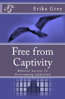 Free From Captivity, Biblical Secrets to Overcoming Addiction by Erika Grey