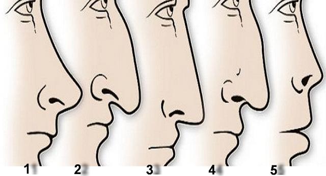 forma nasului unei persoane releva informatii interesante despre personalitatea acesteia