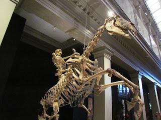 Skeleton Ranger