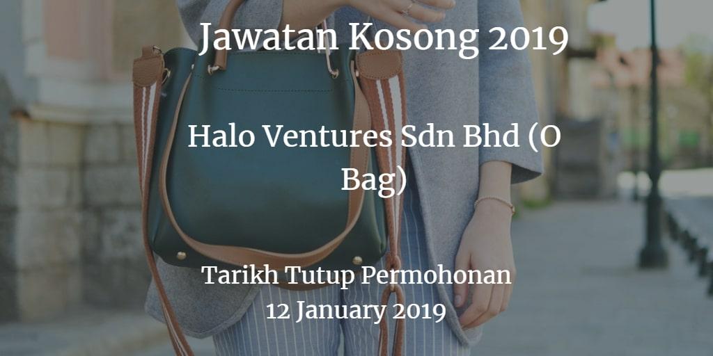 Jawatan Kosong Halo Ventures Sdn Bhd (O Bag) 12 January  2019