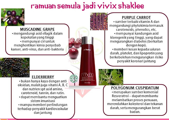 Image result for vivix shaklee