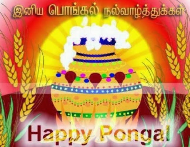 Pongal 2014 Images Pongla 2014 Greetings Happy