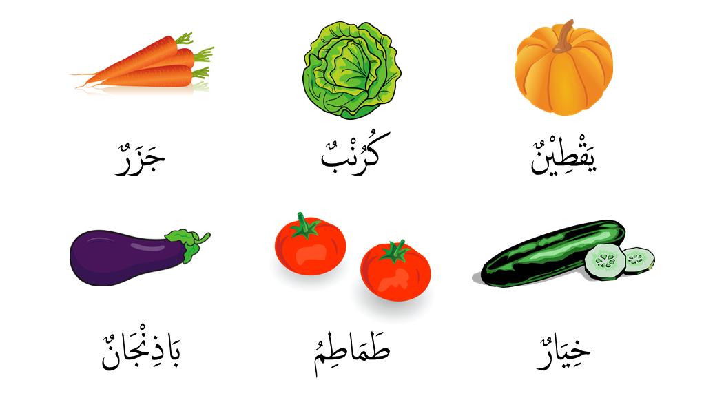 Image Result For Kata Bijak Dalam Bahasa Inggris Tentang Ilmu