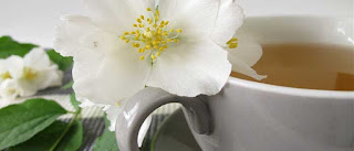 Beyaz Çay Nedir? Nasıl Kullanılır? Faydaları ve Yan Etkileri Nelerdir?