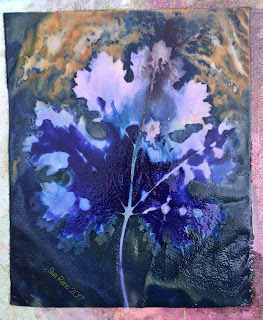 Wet cyanotype, Sue Reno, Image 19