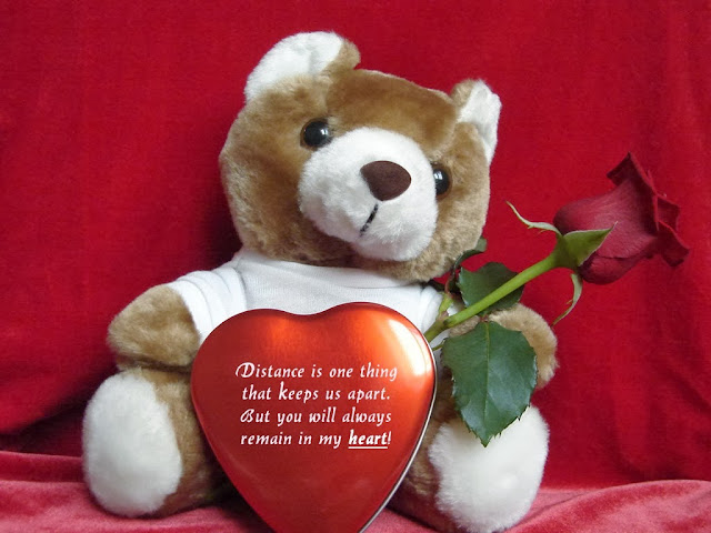 teddy day hd image