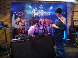 Hedwig Harry Potter