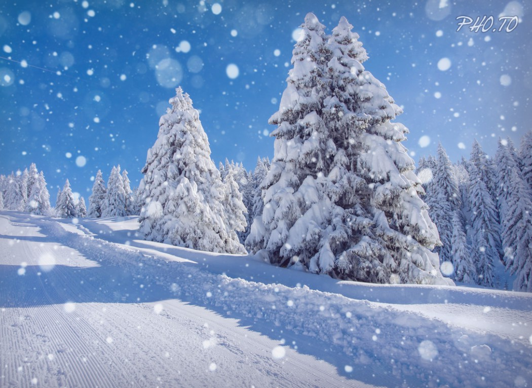 Hiệu Ứng Tuyết Rơi