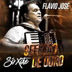 Baixar CD - Flávio José - Seleção De Ouro