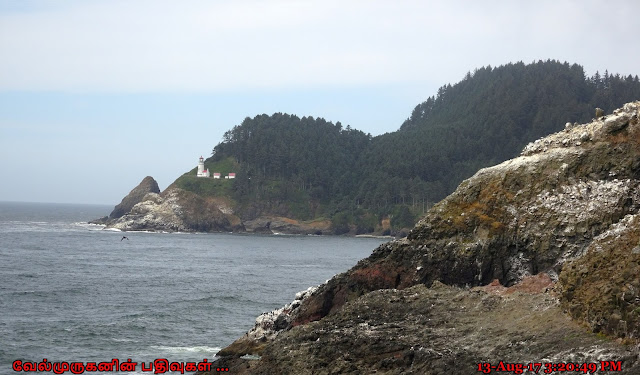 Heceta Head Lighthouse Florence