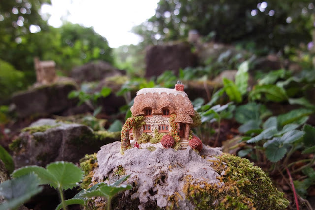 a tiny model of a thatched cottage sat on a rock amongst the bushes