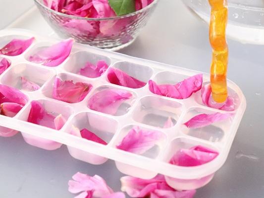 créer des glaçons de fleurs