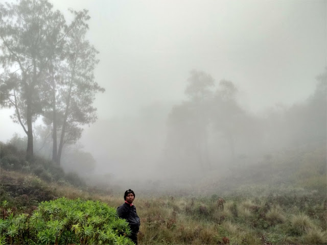 Padang Savana Gn Butak Berkabut