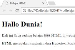 Cara Membuat Huruf Tercoret (strikethrough) Pada HTML Dengan Tag s dan tag del