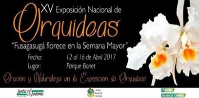 XV EXPOSICIÓN NACIONAL DE ORQUÍDEAS