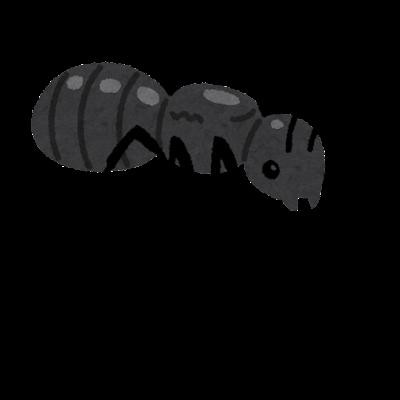 女王アリのイラスト(蟻)