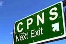 Pemerintah Menaikkan Passing Grade Kelulusan CPNS 2014