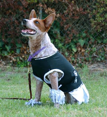 Target cheerleader dog tee