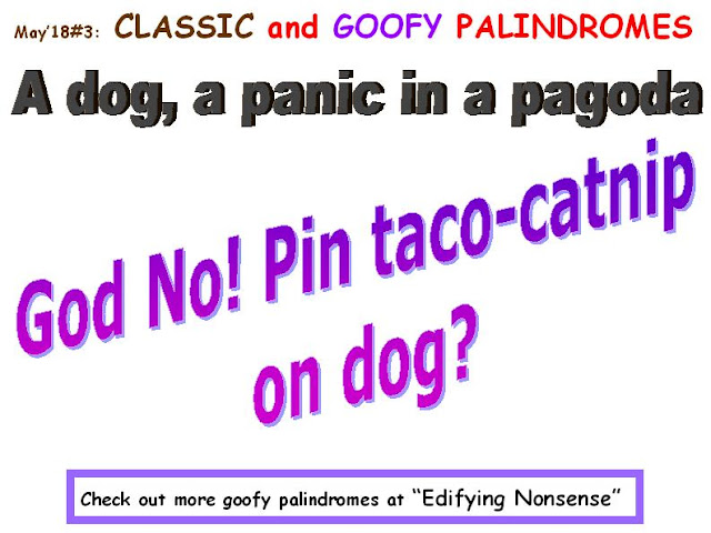 CLASSIC: A dog, a panic in a pagoda. GOOFY: God, No! Pin taco-catnip on dog?