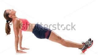 position of reverse planks,how do reverse planks