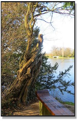 romantischer Platz im Wörlitzer Park