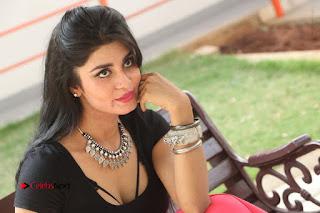 Telugu Actress Harini Stills at Dhyavudaa Movie Teaser Launch  0431.JPG