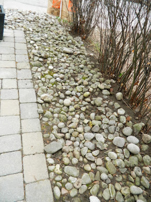 Front Garden Spring Cleanup After Mount Pleasant East Davisville by Paul Jung Gardening Services a Toronto Gardening Company