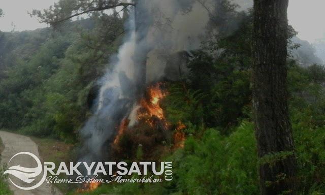 Diduga Akibat Puntung Rokok, 1Ha Hutan di Kapala Pitu Ludes Dimakan Api
