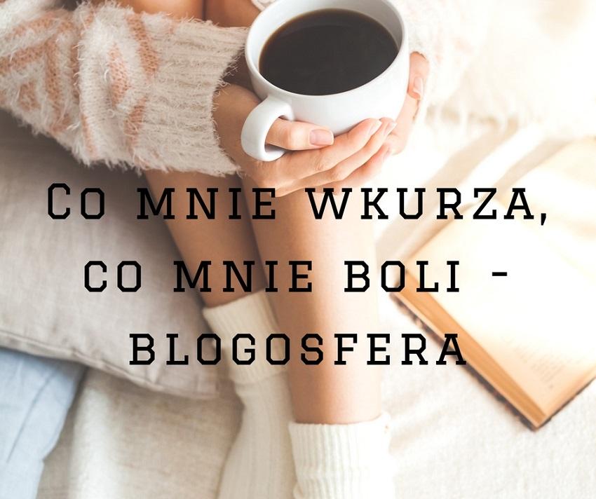 Co jest denerwującego w blogosferze