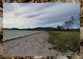 Windswept Beaches - Day Trip from Hobart, Tasmania to the Tasman Peninsula and Port Arthur