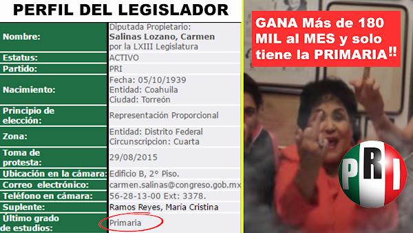 Lanzan petición para exigir que la licenciatura sea obligatoria para ser diputado o senador