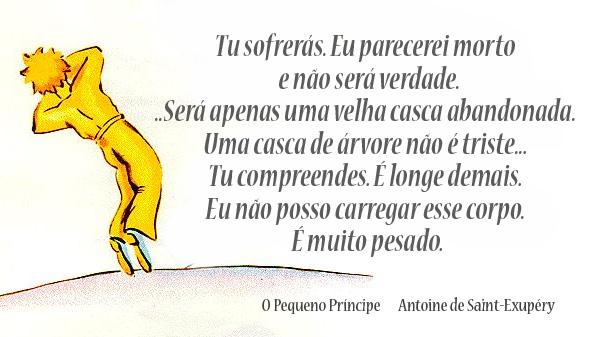Frases Do Pequeno Principe: Belaserra: Agosto 2013
