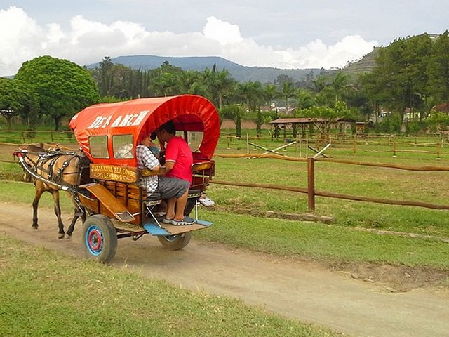 De' Ranch Wisata ala cowboy di Lembang